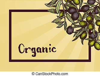 Vector frame with place for text and hand drawn olive branches