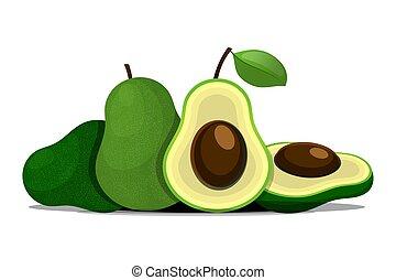 Vector fresh fruit avocado isolated on white background.