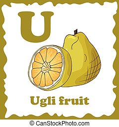 Vector fruit alphabet for education. Illustration for kids....