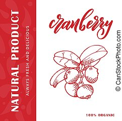 Vector fruit element of cranberry. Hand drawn icon with lettering. Food illustration for cafe, market, menu design