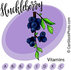 Vector fruit element of huckleberry. Hand drawn icon with lettering. Food illustration for cafe, market, menu design.