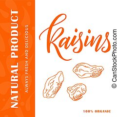 Vector fruit element of raisins. Hand drawn icon with lettering. Food illustration for cafe, market, menu design