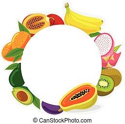 Vector fruit frame illustration