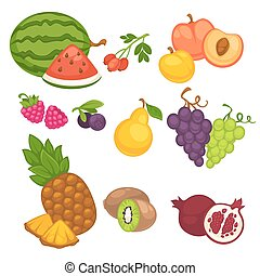 vector, fruta, conjunto, de, diferente, fruits.