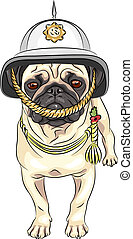 vector funny cartoon dog pug in the British helmet - serious...