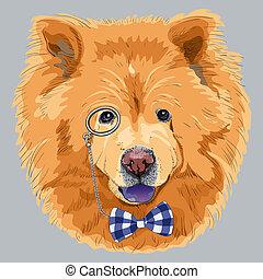 vector funny cartoon hipster chow-chow dog