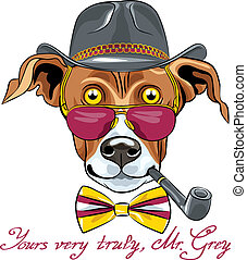 vector funny cartoon hipster Greyhound Dog breed - hipster...