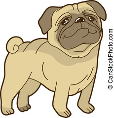 Vector funny cartoon pug - on white background