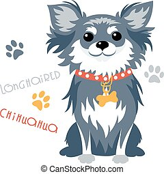 Vector funny longhaired Chihuahua dog sitting
