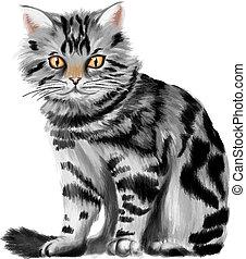 vector, gatito, atigrado, ilustración, sentado