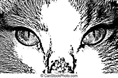 vector, gato, cara, cicatrizarse