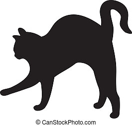 vector, gato