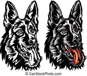 German shepherd - Vector, German shepherd
