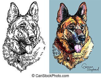 Vector German shepherd in color and black and white - Black ...
