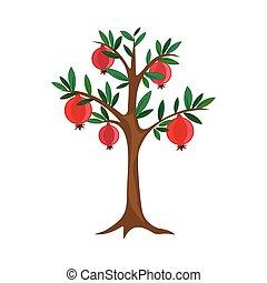 vector, granada, fruta, árbol, naturaleza, hoja, ilustración