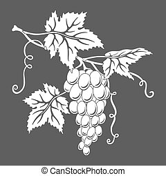 Vector silhouette of grapes with leaves on gray.