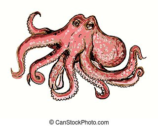 octopus - Vector graphic, artistic, stylized image of...