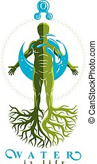 Vector graphic illustration of muscular human, individual...