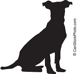 Vector graphic outline of a pitbull weimaraner puppy.
