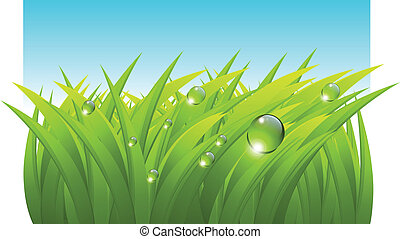 Vector grass background
