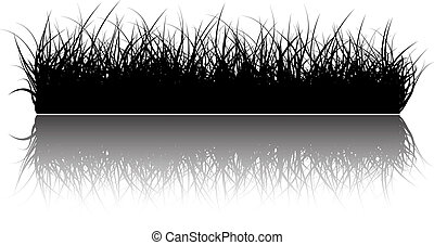 Vector grass background