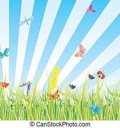 vector grass, flowers, butterflies meadow illustration