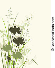 floral background with chamomile
