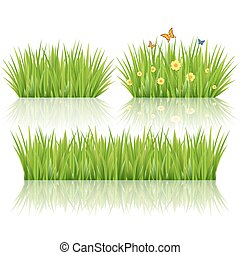 Grass set, vector