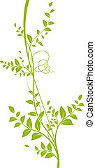 vector green liana white background - vector decorative...