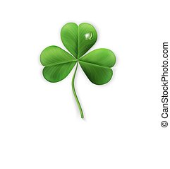 vector green shamrock on a white background (element for design) for the holiday sv.Patrika