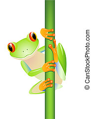 Vector green tree frog