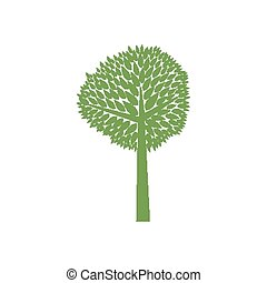 green tree - Vector green tree isolated on white background