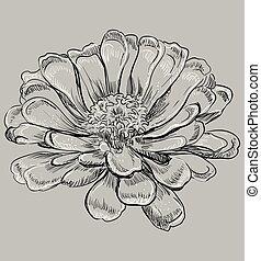 vector, gris, flor 6
