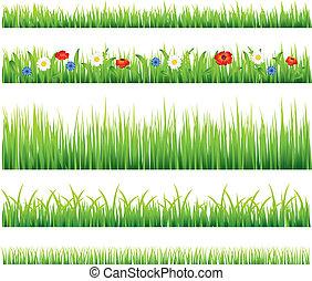 vector, groene, bloemen, gras, set