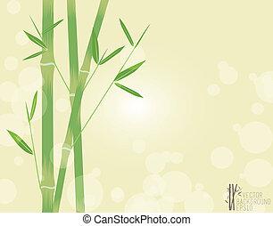 vector, groene, illustratie, bamboe