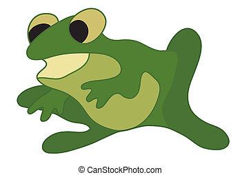vector, groene, illustratie, kikker