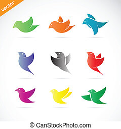 vector, groep, van, kleurrijke, vogel