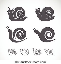 Vector group of a snail on white background