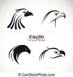 Vector group of eagle head design on white background.