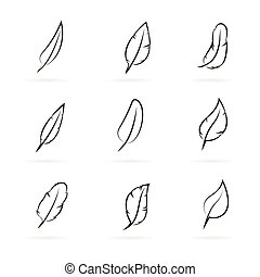 Vector group of feathers on white background.