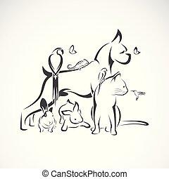 Vector group of pets - Dog, Cat, Humming bird, Parrot, ...