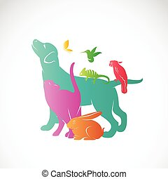 Vector group of pets - Dog, cat, parrot, chameleon, rabbit, butterfly, hummingbird isolated on white background, / Vector pets for your design.