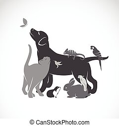 Vector group of pets - Dog, cat, parrot, chameleon, rabbit, butterfly, guinea pig, hummingbird isolated on white background.