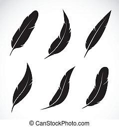 vector, grupo, de, pluma