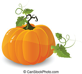 vector halloween pumpkin isolated on white background