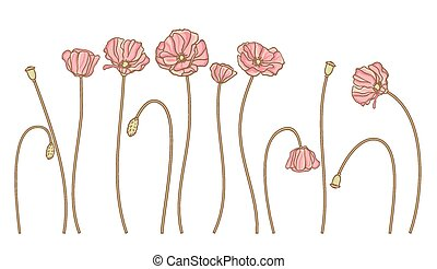 Vector hand draw flowers set isolated on white