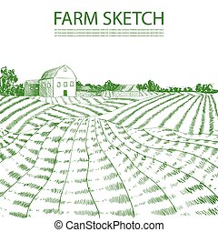Vector Hand Drawn Farm Field Illustration, Green Lines Engrave Style.