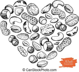 Vector hand drawn nuts illustration in heart shape....