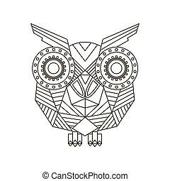 Vector hand drawn Owl