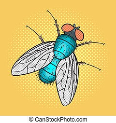 Vector hand drawn pop art illustration of fly.